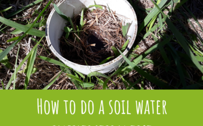 How to do a soil water infiltration test